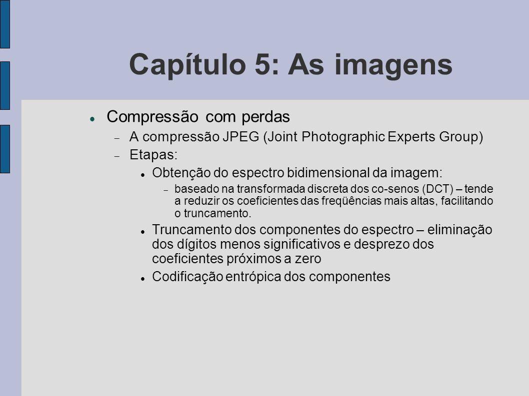 Capítulo 5: As imagens Compressão com perdas A compressão JPEG (Joint Photographic Experts Group) Etapas: Obtenção do espectro bidimensional da imagem