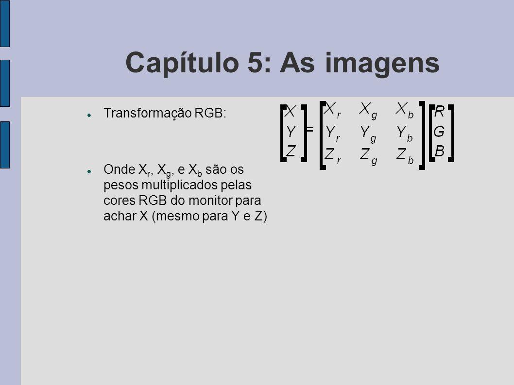 Capítulo 5: As imagens Processamento da imagem Formatos comuns PCX (DOS) GIF (padrão de intercâmbio de imagens) BMP (Windows) TIFF (padrão independente de fabricante, alta resolução) PCD (usado em Photo-CD, com múltiplas resoluções) JPEG (orientado a imagens fotográficas) PNG (alternativa ao GIF para distribuição de imagens comprimidas sem perdas.) etc.