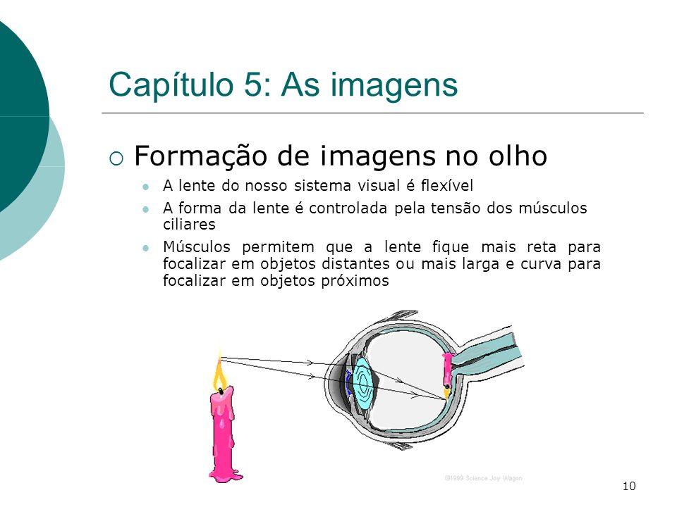 10 Capítulo 5: As imagens Formação de imagens no olho A lente do nosso sistema visual é flexível A forma da lente é controlada pela tensão dos músculos ciliares Músculos permitem que a lente fique mais reta para focalizar em objetos distantes ou mais larga e curva para focalizar em objetos próximos