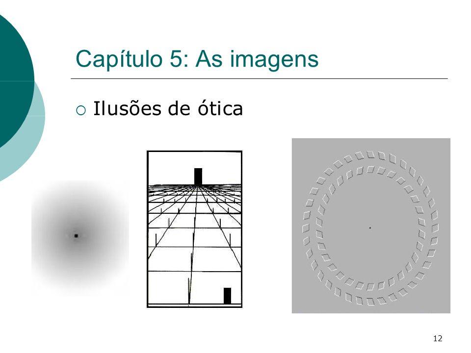 12 Capítulo 5: As imagens Ilusões de ótica