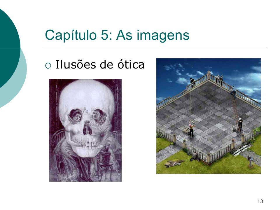 13 Capítulo 5: As imagens Ilusões de ótica