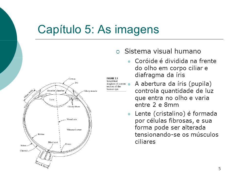 5 Capítulo 5: As imagens Sistema visual humano Coróide é dividida na frente do olho em corpo ciliar e diafragma da íris A abertura da íris (pupila) controla quantidade de luz que entra no olho e varia entre 2 e 8mm Lente (cristalino) é formada por células fibrosas, e sua forma pode ser alterada tensionando-se os músculos ciliares