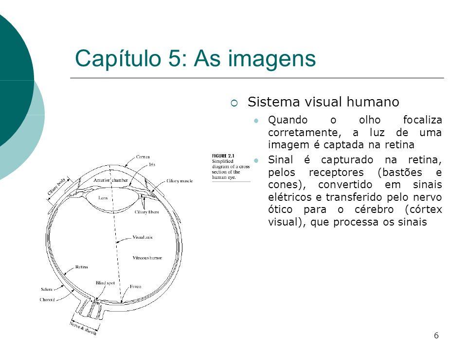 6 Capítulo 5: As imagens Sistema visual humano Quando o olho focaliza corretamente, a luz de uma imagem é captada na retina Sinal é capturado na retina, pelos receptores (bastões e cones), convertido em sinais elétricos e transferido pelo nervo ótico para o cérebro (córtex visual), que processa os sinais