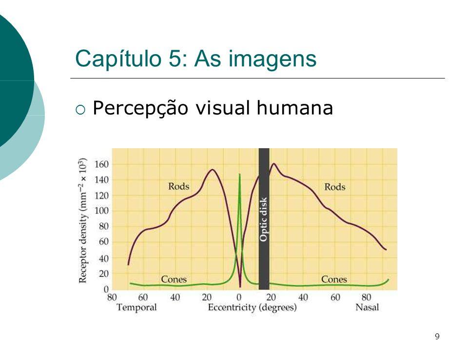 9 Capítulo 5: As imagens Percepção visual humana