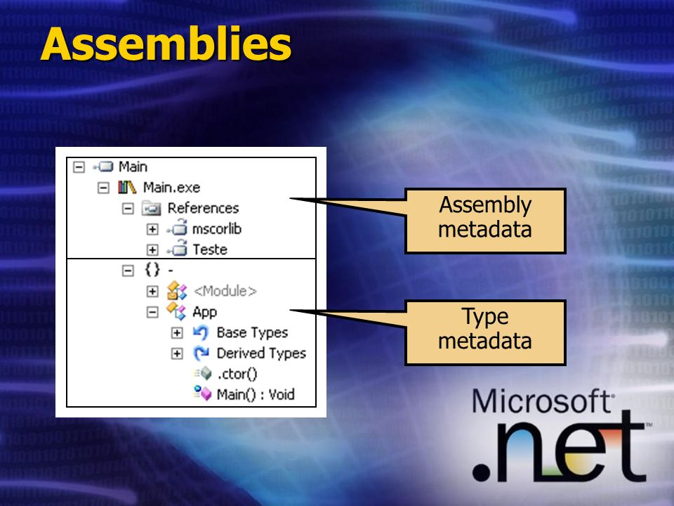Assemblies Assembly metadata Type metadata