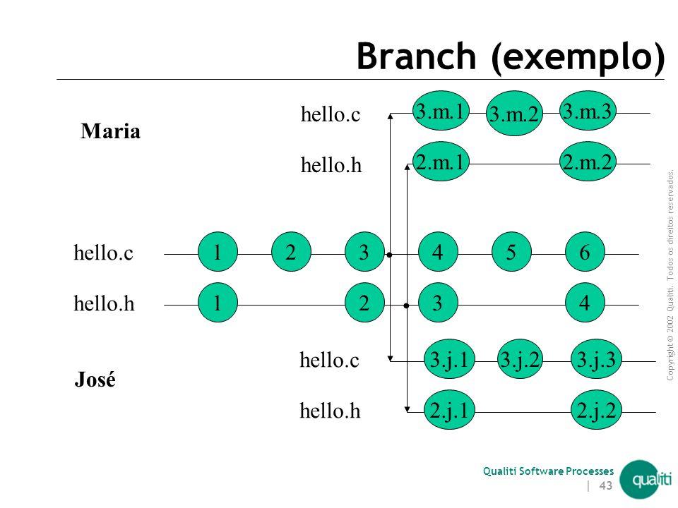 Copyright © 2002 Qualiti. Todos os direitos reservados. Qualiti Software Processes | 42 Branch (continuação) Uso de lock inviabiliza a criação de bran