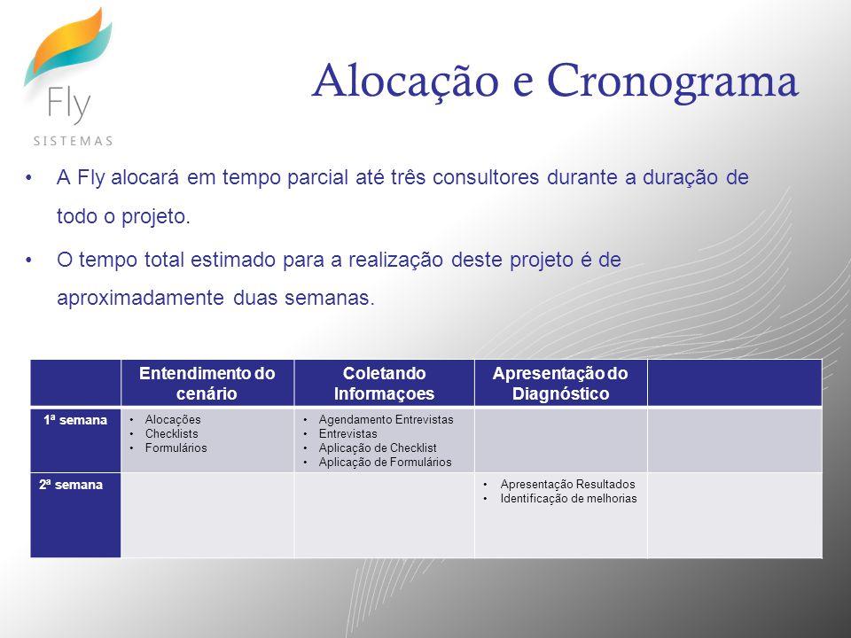 Alocação e Cronograma A Fly alocará em tempo parcial até três consultores durante a duração de todo o projeto. O tempo total estimado para a realizaçã