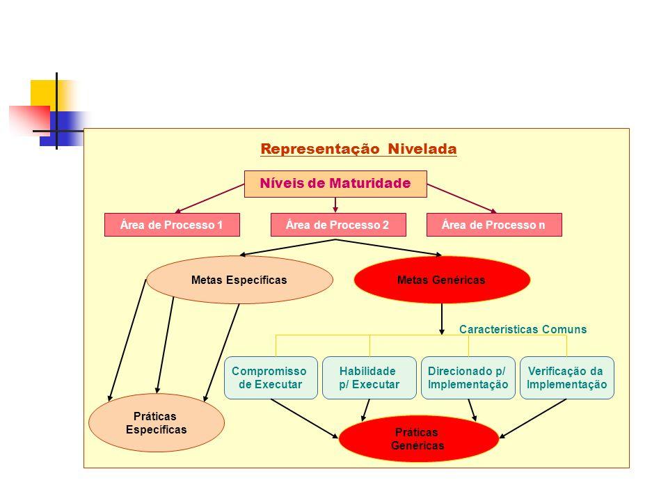 Metas EspecíficasMetas Genéricas Práticas Específicas Representação Nivelada Níveis de Maturidade Práticas Genéricas Compromisso de Executar Habilidade p/ Executar Direcionado p/ Implementação Verificação da Implementação Características Comuns Área de Processo 1Área de Processo 2Área de Processo n
