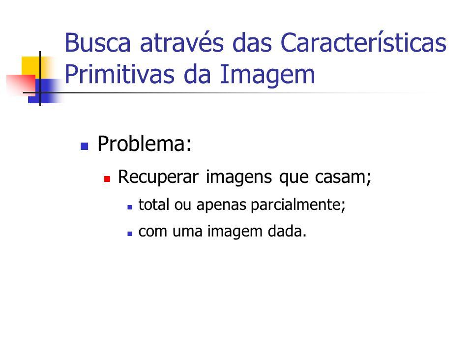Busca através das Características Primitivas da Imagem Problema: Recuperar imagens que casam; total ou apenas parcialmente; com uma imagem dada.