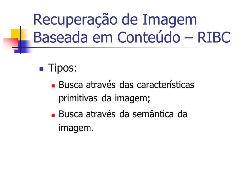 Busca através das Características Primitivas da Imagem – Procedimento Dada uma imagem que representa a consulta do usuário; os mesmos passos descritos anteriormente são repetidos para esta imagem.