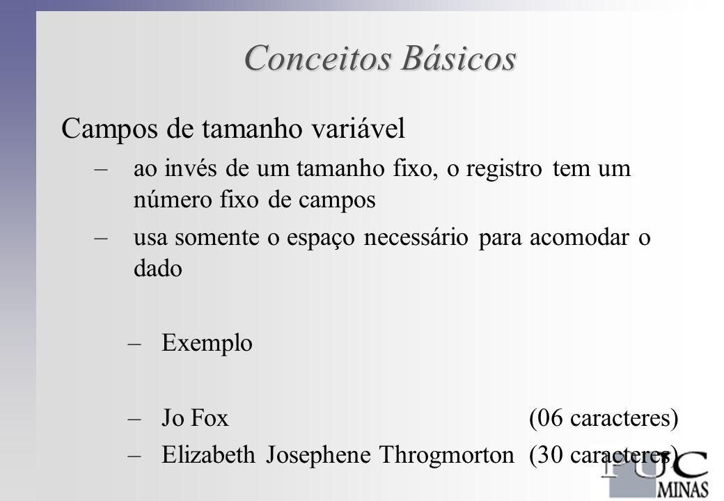 Conceitos Básicos Campos de tamanho variável –ao invés de um tamanho fixo, o registro tem um número fixo de campos –usa somente o espaço necessário para acomodar o dado –Exemplo –Jo Fox(06 caracteres) –Elizabeth Josephene Throgmorton (30 caracteres)