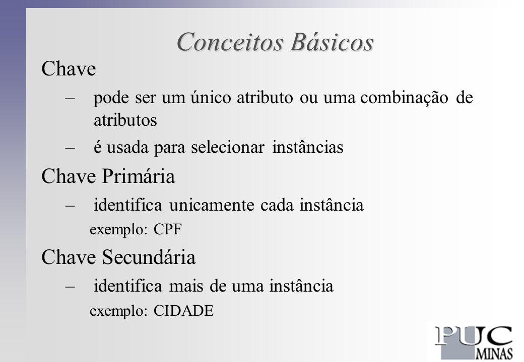 Conceitos Básicos Chave –pode ser um único atributo ou uma combinação de atributos –é usada para selecionar instâncias Chave Primária –identifica unicamente cada instância exemplo: CPF Chave Secundária –identifica mais de uma instância exemplo: CIDADE