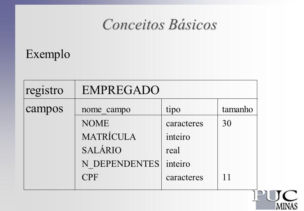 Conceitos Básicos Exemplo registro EMPREGADO campos nome_campotipotamanho NOMEcaracteres 30 MATRÍCULAinteiro SALÁRIOreal N_DEPENDENTESinteiro CPFcaracteres11