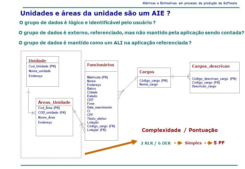 Métricas e Estimativas em processo de produção de Software Unidades e áreas da unidade são um AIE .