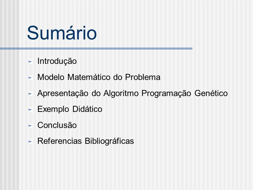 Sumário Introdução Modelo Matemático do Problema Apresentação do Algoritmo Programação Genético Exemplo Didático Conclusão Referencias Bibliográficas