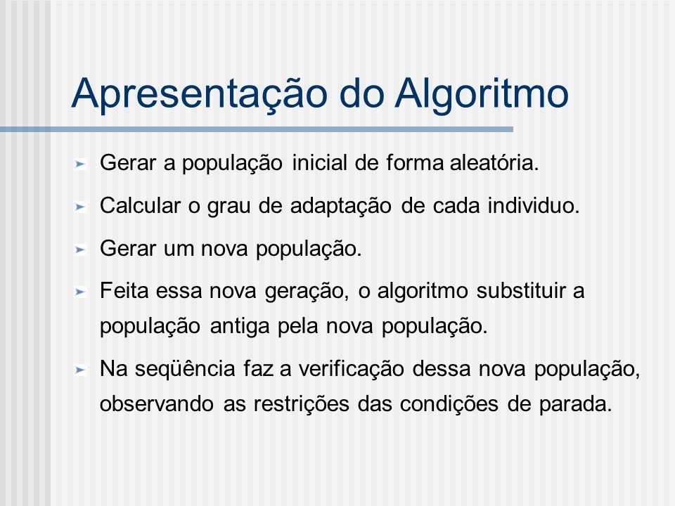 Apresentação do Algoritmo Gerar a população inicial de forma aleatória. Calcular o grau de adaptação de cada individuo. Gerar um nova população. Feita