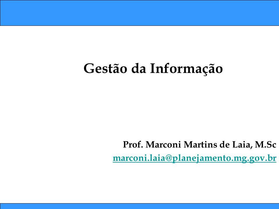 Prof. Marconi Martins de Laia, M.Sc marconi.laia@planejamento.mg.gov.br Gestão da Informação