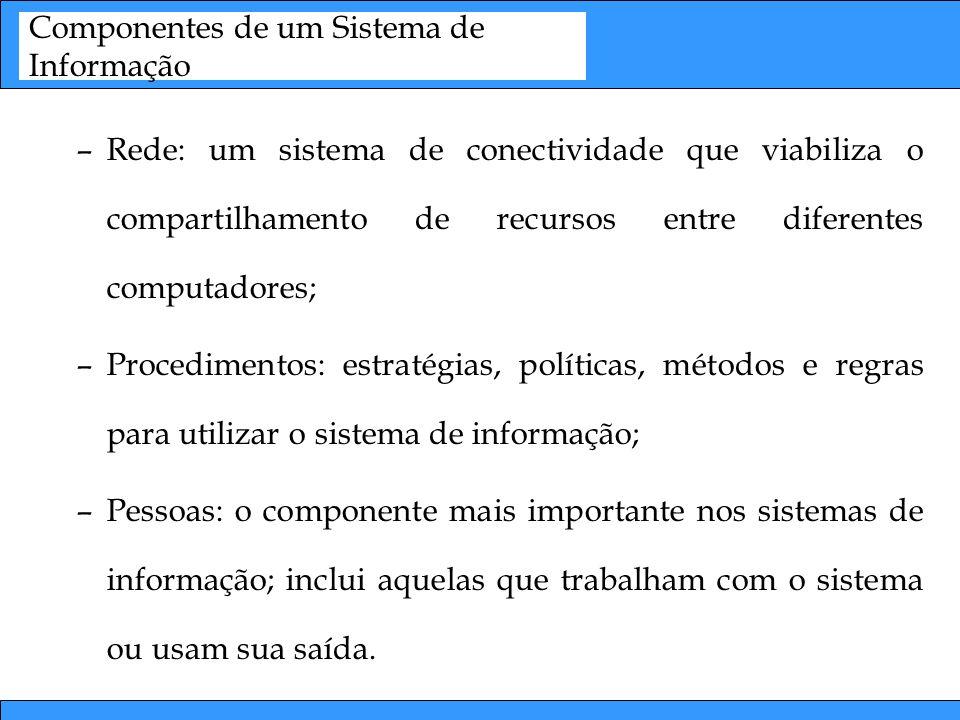 Componentes de um Sistema de Informação –Rede: um sistema de conectividade que viabiliza o compartilhamento de recursos entre diferentes computadores;