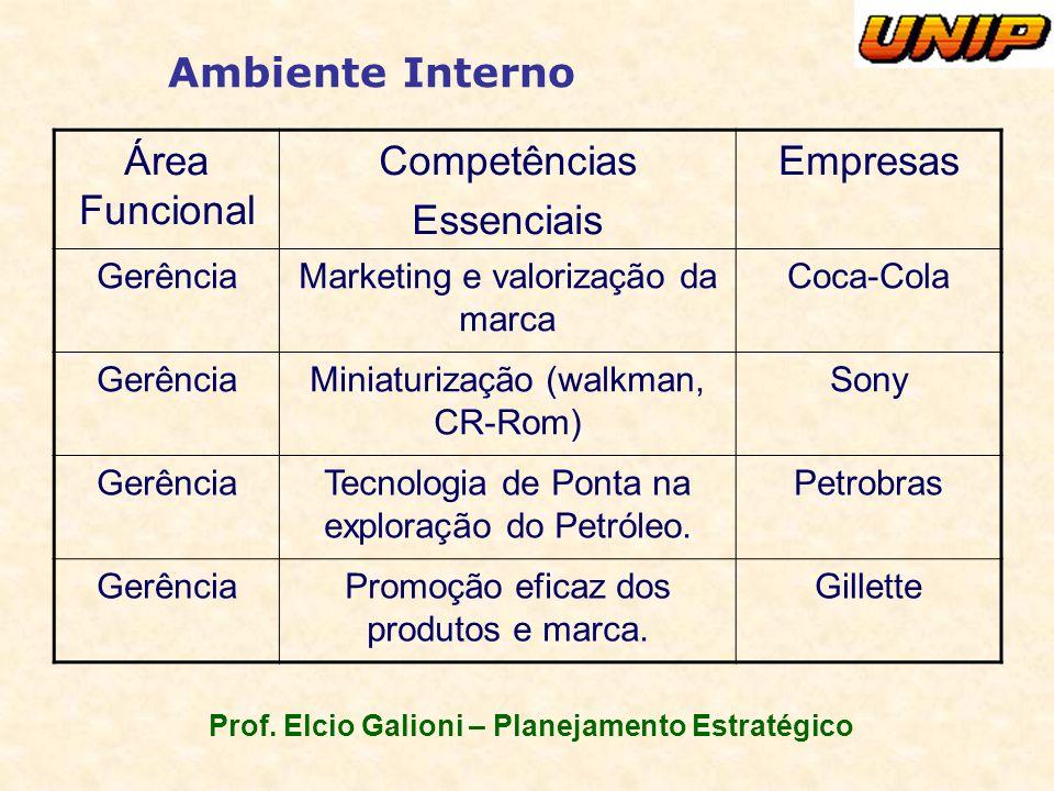 Prof. Elcio Galioni – Planejamento Estratégico Ambiente Interno Área Funcional Competências Essenciais Empresas GerênciaMarketing e valorização da mar