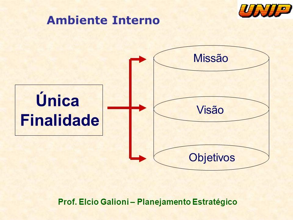 Prof. Elcio Galioni – Planejamento Estratégico Ambiente Interno Única Finalidade Missão Visão Objetivos