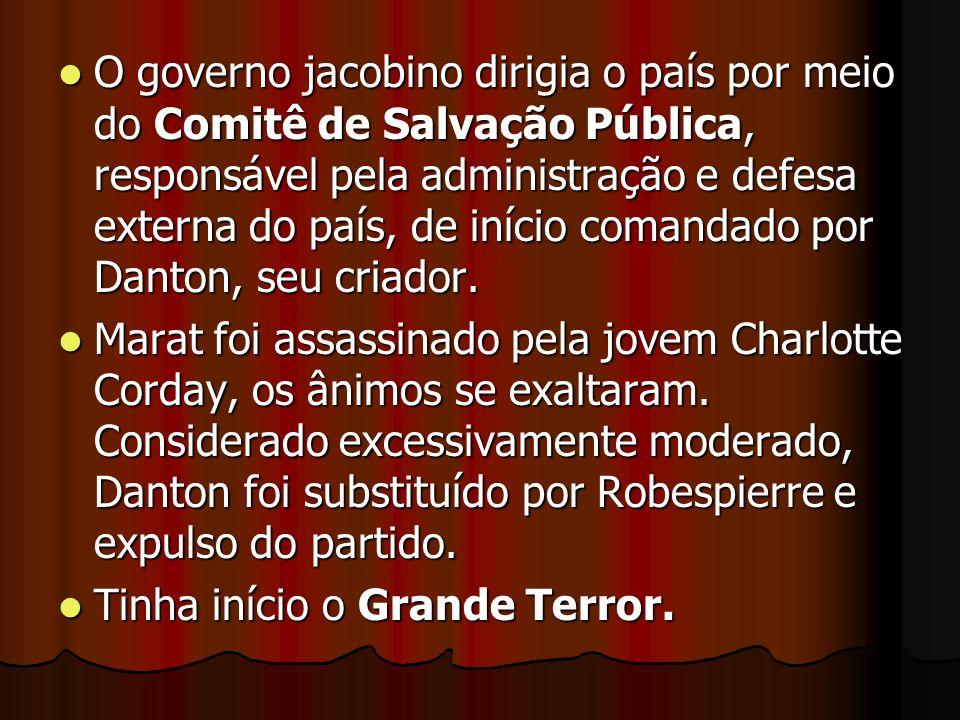 O governo jacobino dirigia o país por meio do Comitê de Salvação Pública, responsável pela administração e defesa externa do país, de início comandado