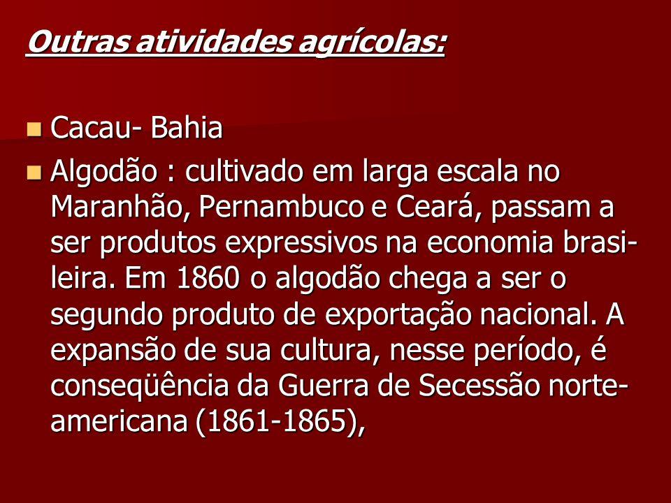Outras atividades agrícolas: Cacau- Bahia Cacau- Bahia Algodão : cultivado em larga escala no Maranhão, Pernambuco e Ceará, passam a ser produtos expr