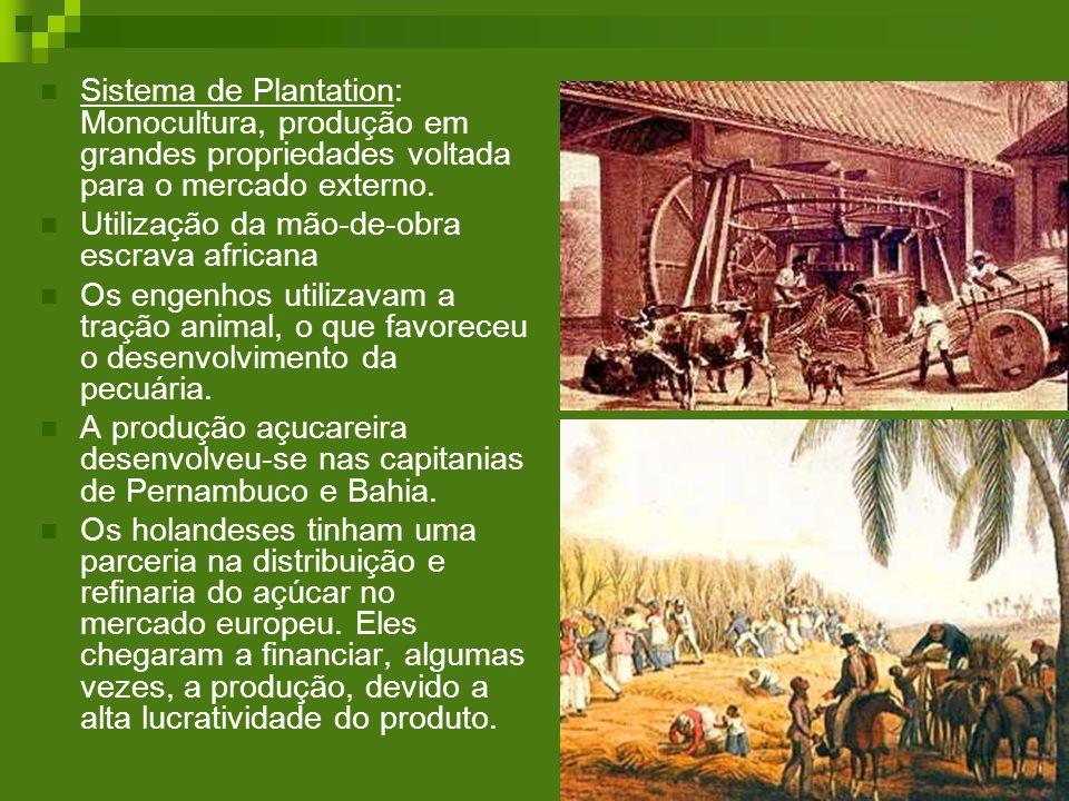 Sistema de Plantation: Monocultura, produção em grandes propriedades voltada para o mercado externo. Utilização da mão-de-obra escrava africana Os eng