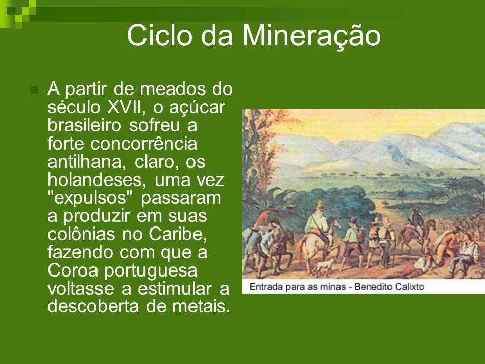 Ciclo da Mineração A partir de meados do século XVII, o açúcar brasileiro sofreu a forte concorrência antilhana, claro, os holandeses, uma vez