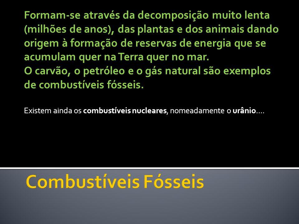 Formam-se através da decomposição muito lenta (milhões de anos), das plantas e dos animais dando origem à formação de reservas de energia que se acumu