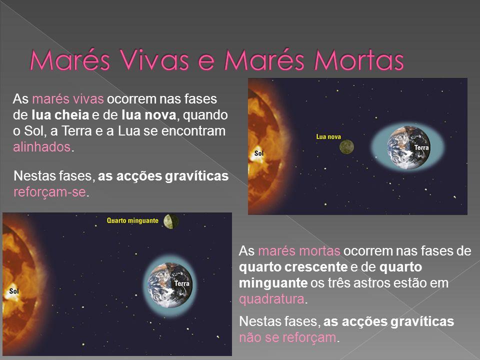 As marés vivas ocorrem nas fases de lua cheia e de lua nova, quando o Sol, a Terra e a Lua se encontram alinhados. As marés mortas ocorrem nas fases d
