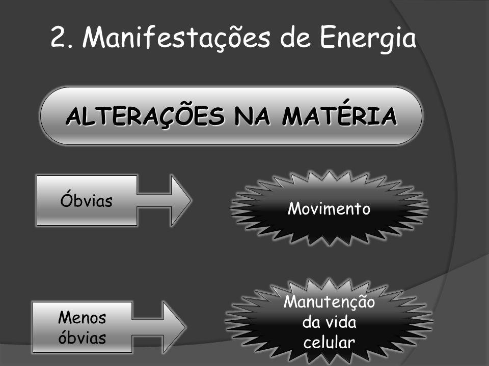 Menos óbvias Óbvias ALTERAÇÕES NA MATÉRIA Movimento Manutenção da vida celular 2. Manifestações de Energia