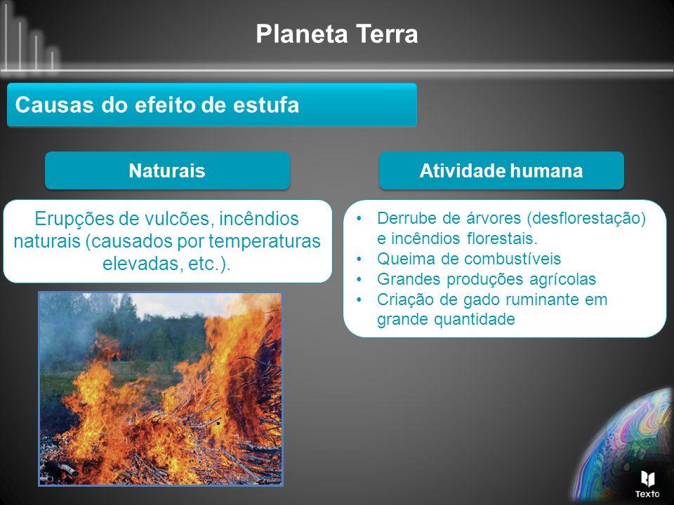 Planeta Terra Naturais Erupções de vulcões, incêndios naturais (causados por temperaturas elevadas, etc.). Derrube de árvores (desflorestação) e incên