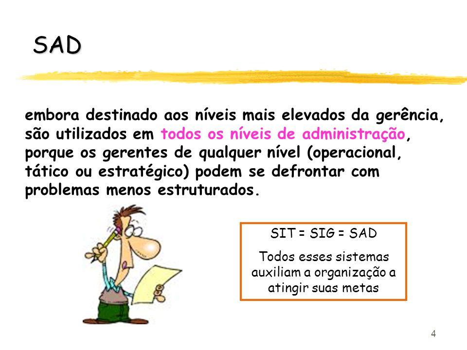 4 SAD embora destinado aos níveis mais elevados da gerência, são utilizados em todos os níveis de administração, porque os gerentes de qualquer nível