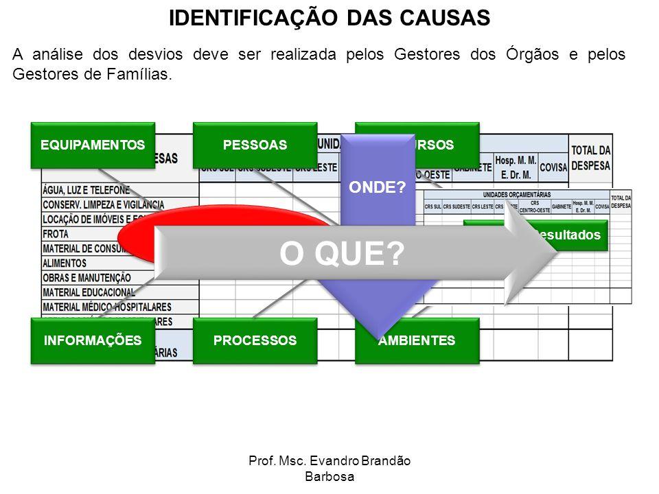 Prof. Msc. Evandro Brandão Barbosa A análise dos desvios deve ser realizada pelos Gestores dos Órgãos e pelos Gestores de Famílias. IDENTIFICAÇÃO DAS