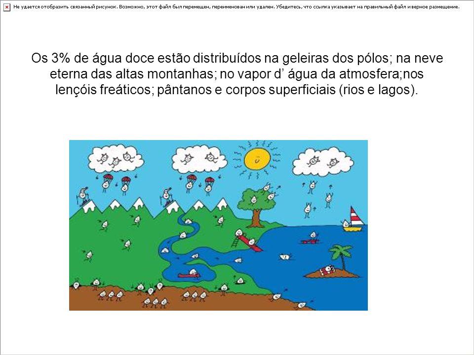 A água doce, mais fácil de ser utilizada em atividades humanas, está presente nos rios, porém, estes estão contaminados e poluídos, como o Rio Tietê (São Paulo/SP)