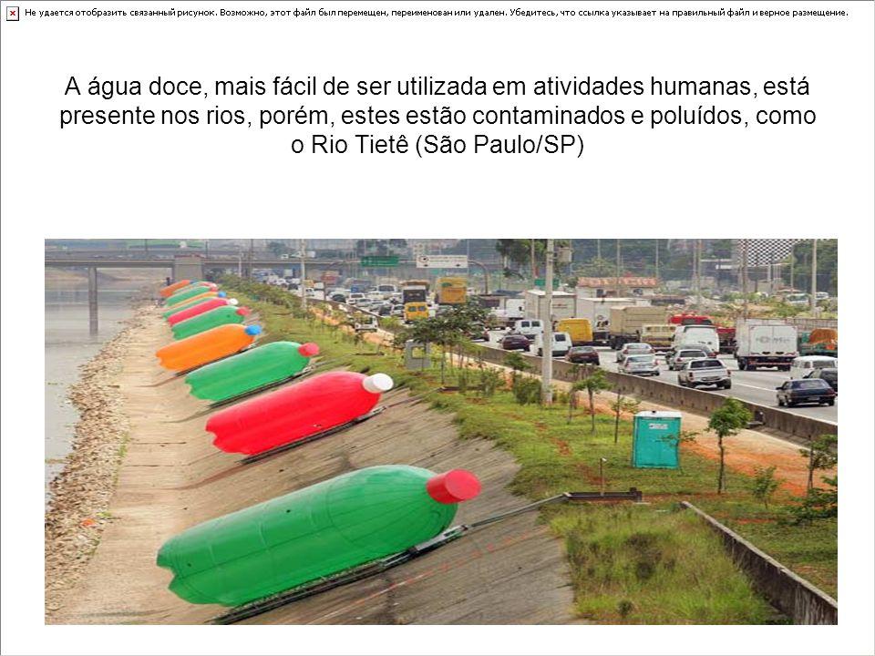 A água doce, mais fácil de ser utilizada em atividades humanas, está presente nos rios, porém, estes estão contaminados e poluídos, como o Rio Tietê (