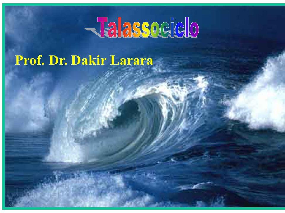Prof. Dr. Dakir Larara