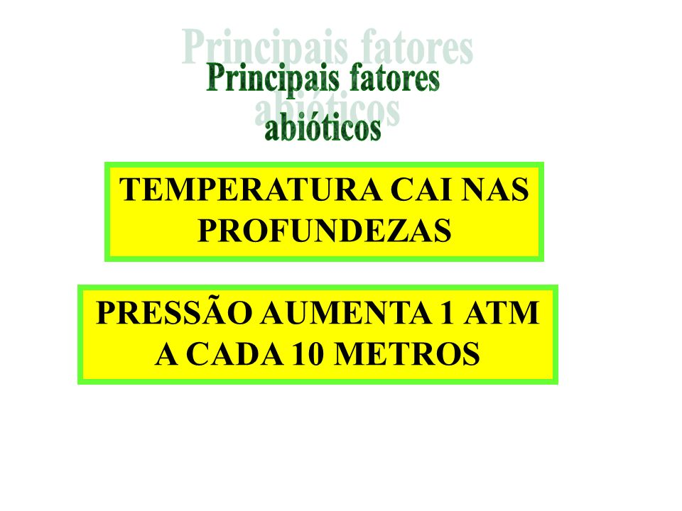 TEMPERATURA CAI NAS PROFUNDEZAS PRESSÃO AUMENTA 1 ATM A CADA 10 METROS