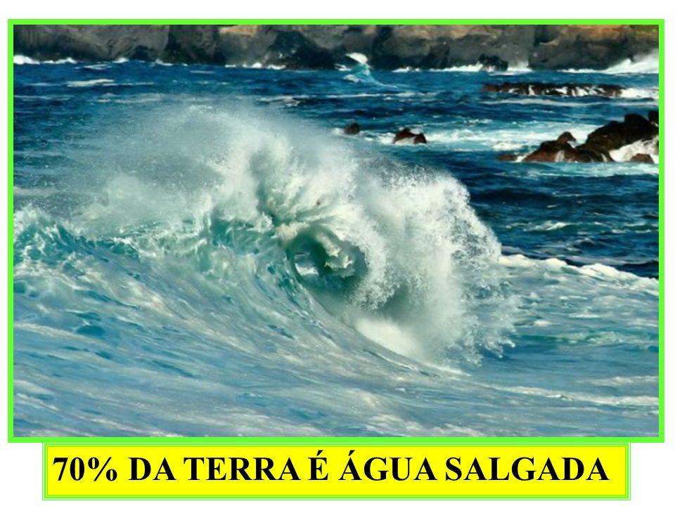 OCORRE NOS LAGOS QUE TÊM MUDANÇAS BRUSCAS DE TEMPERATURA Água a 4 graus Mais densa Desce levando oxigênio Lago bem oxigenado
