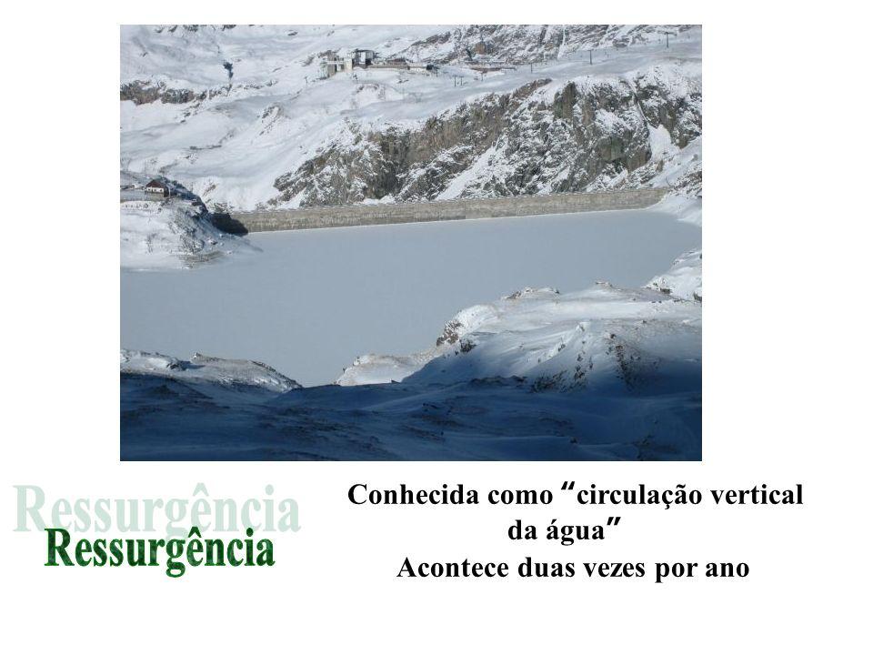 Conhecida como circulação vertical da água Acontece duas vezes por ano