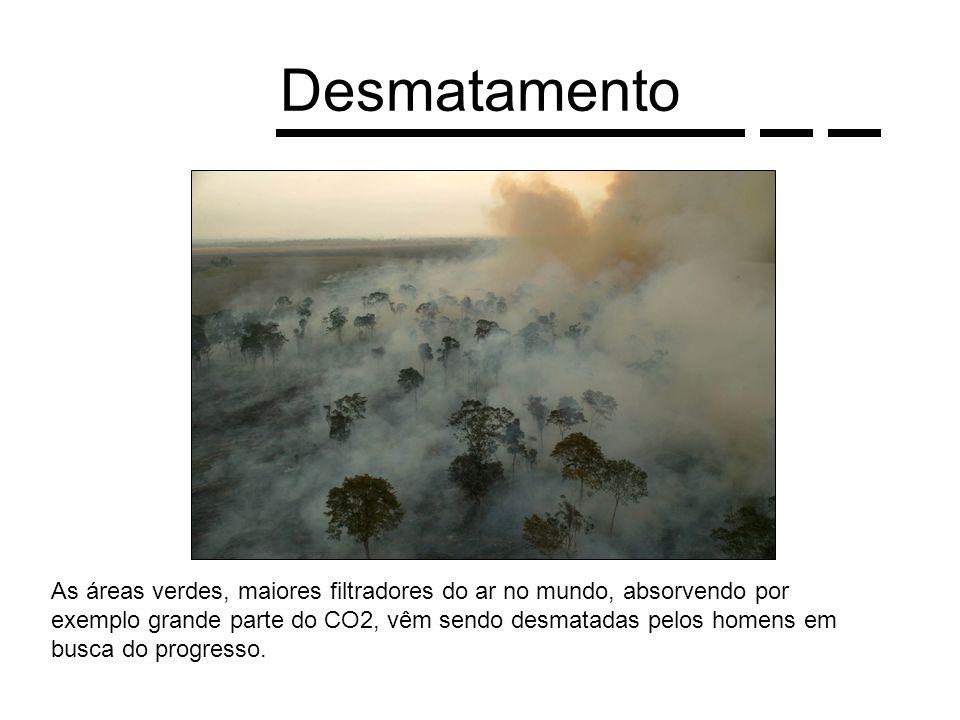Desmatamento As áreas verdes, maiores filtradores do ar no mundo, absorvendo por exemplo grande parte do CO2, vêm sendo desmatadas pelos homens em bus