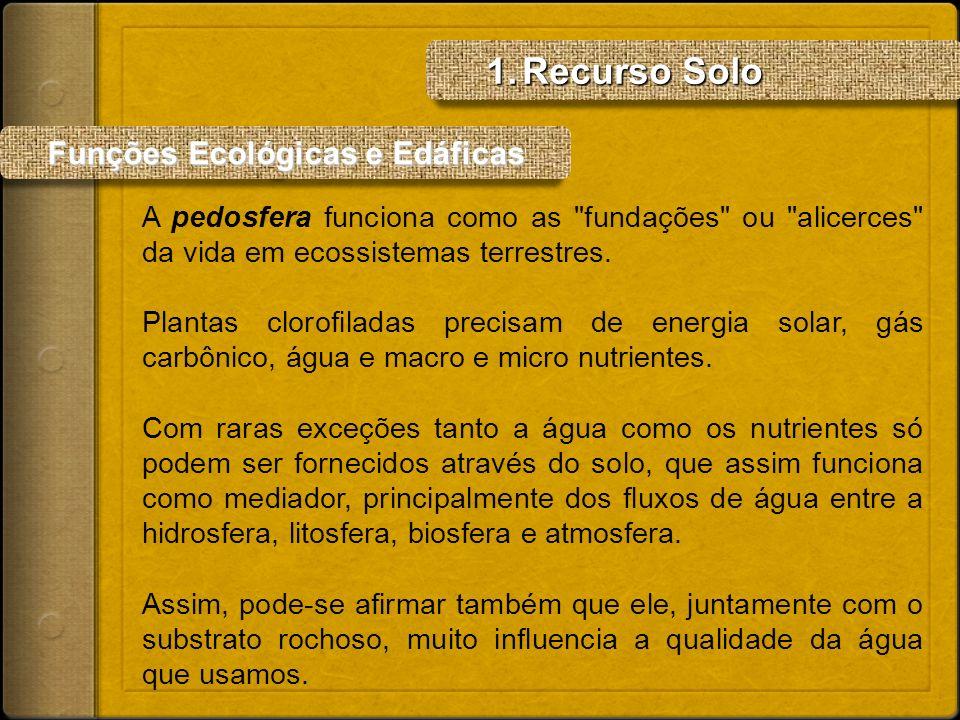 Funções Ecológicas e Edáficas Funções Ecológicas e Edáficas A pedosfera funciona como as
