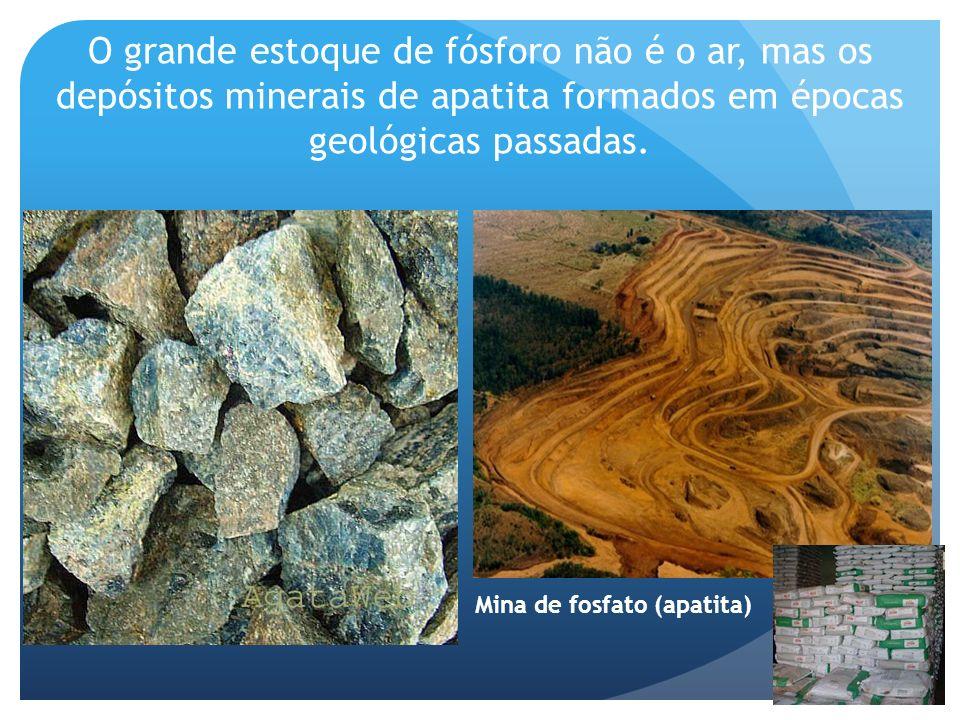 O grande estoque de fósforo não é o ar, mas os depósitos minerais de apatita formados em épocas geológicas passadas. Mina de fosfato (apatita)