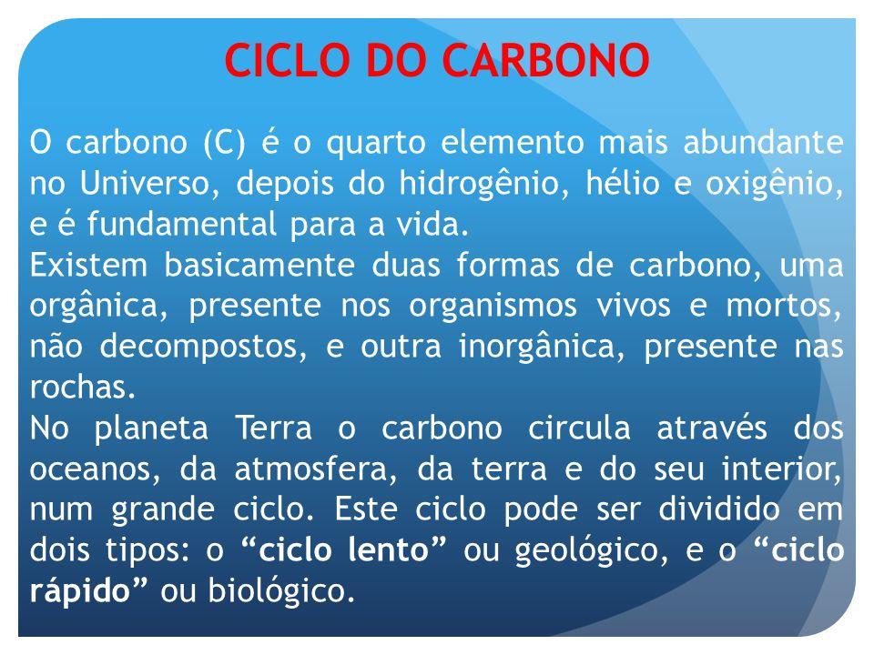 CICLO DO CARBONO O carbono (C) é o quarto elemento mais abundante no Universo, depois do hidrogênio, hélio e oxigênio, e é fundamental para a vida. Ex
