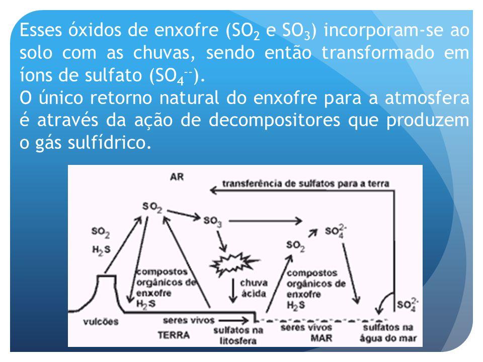 Esses óxidos de enxofre (SO 2 e SO 3 ) incorporam-se ao solo com as chuvas, sendo então transformado em íons de sulfato (SO 4 -- ). O único retorno na