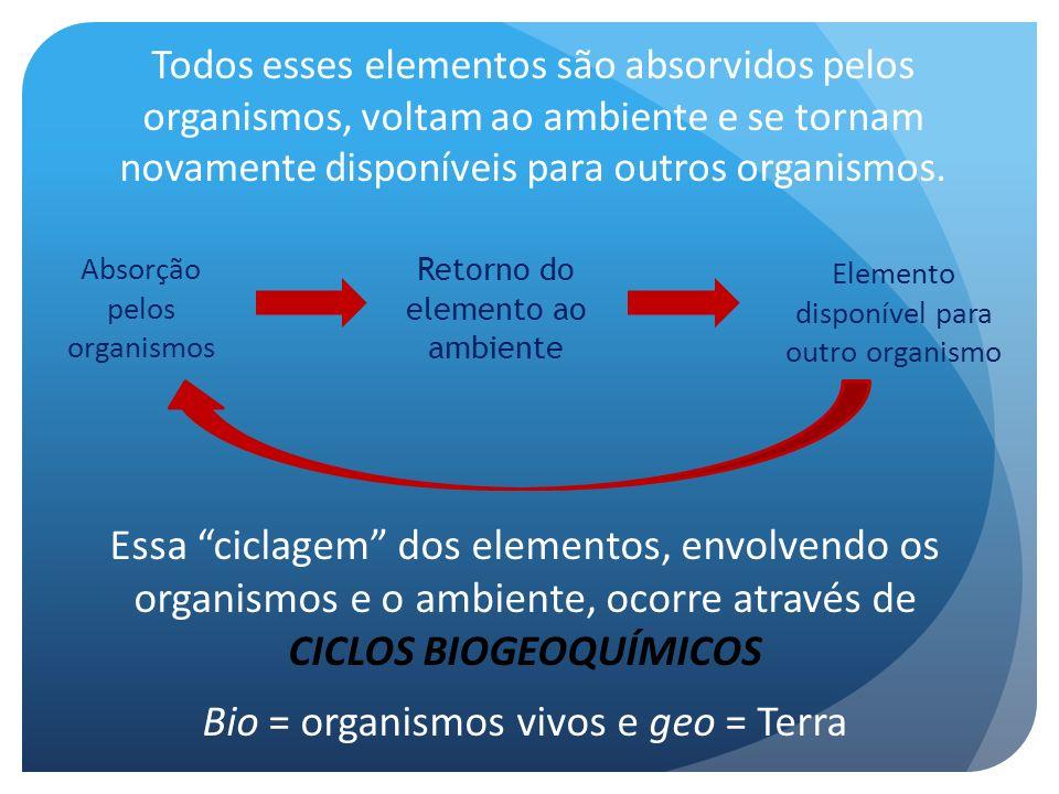Todos esses elementos são absorvidos pelos organismos, voltam ao ambiente e se tornam novamente disponíveis para outros organismos. Absorção pelos org