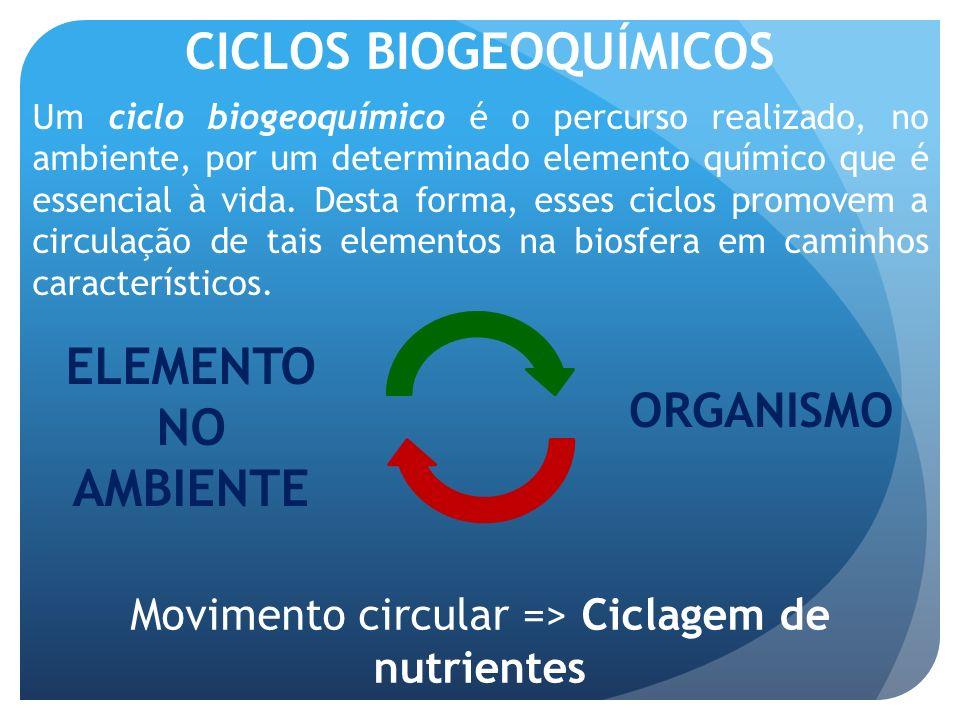 CICLOS BIOGEOQUÍMICOS Um ciclo biogeoquímico é o percurso realizado, no ambiente, por um determinado elemento químico que é essencial à vida. Desta fo