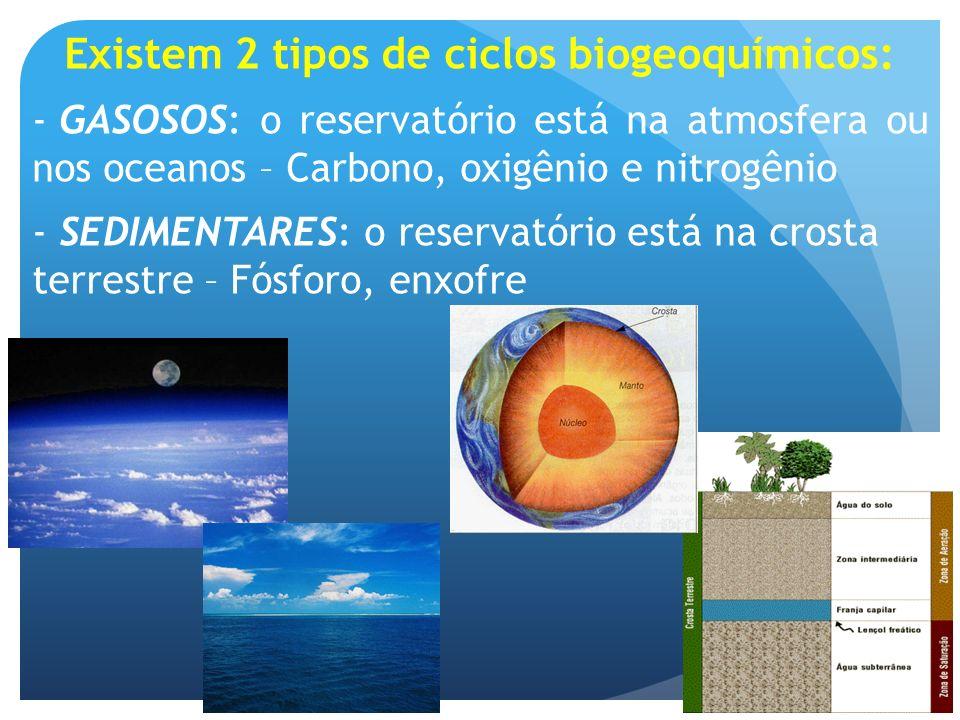 Existem 2 tipos de ciclos biogeoquímicos: - GASOSOS: o reservatório está na atmosfera ou nos oceanos – Carbono, oxigênio e nitrogênio - SEDIMENTARES: