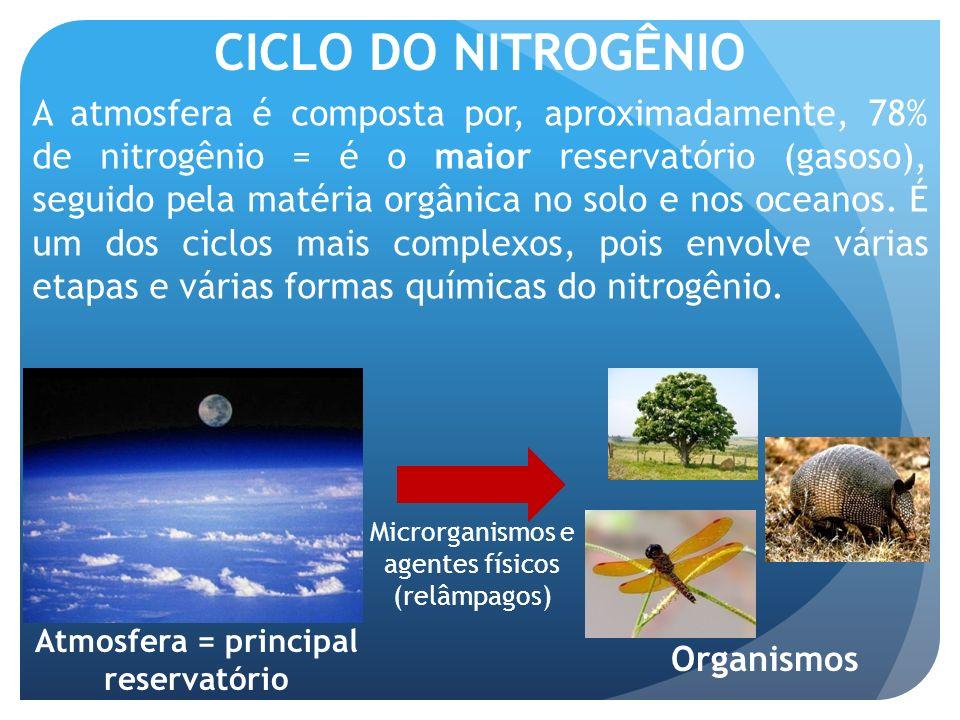 CICLO DO NITROGÊNIO A atmosfera é composta por, aproximadamente, 78% de nitrogênio = é o maior reservatório (gasoso), seguido pela matéria orgânica no