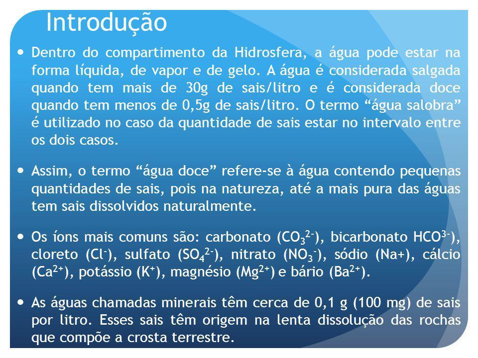 Introdução Dentro do compartimento da Hidrosfera, a água pode estar na forma líquida, de vapor e de gelo.